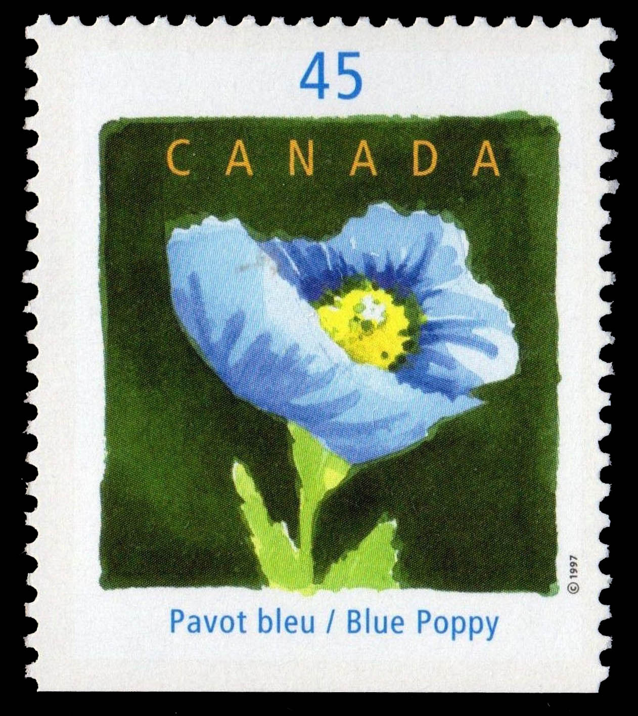 Blue Poppy - International Floral Festival Canada Postage Stamp