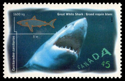 Great White Shark - Carcharodon Carcharias Canada Postage Stamp | Ocean Water Fish