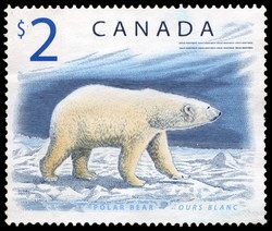 Polar Bear Canada Postage Stamp | Canadian Wildlife