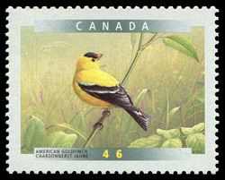 American Goldfinch (Carduelis Tristis) Canada Postage Stamp | Birds of Canada
