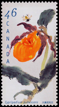 Great Yellow Lady's Slipper, Cypripedium pubescens Canada Postage Stamp | Orchids of Canada