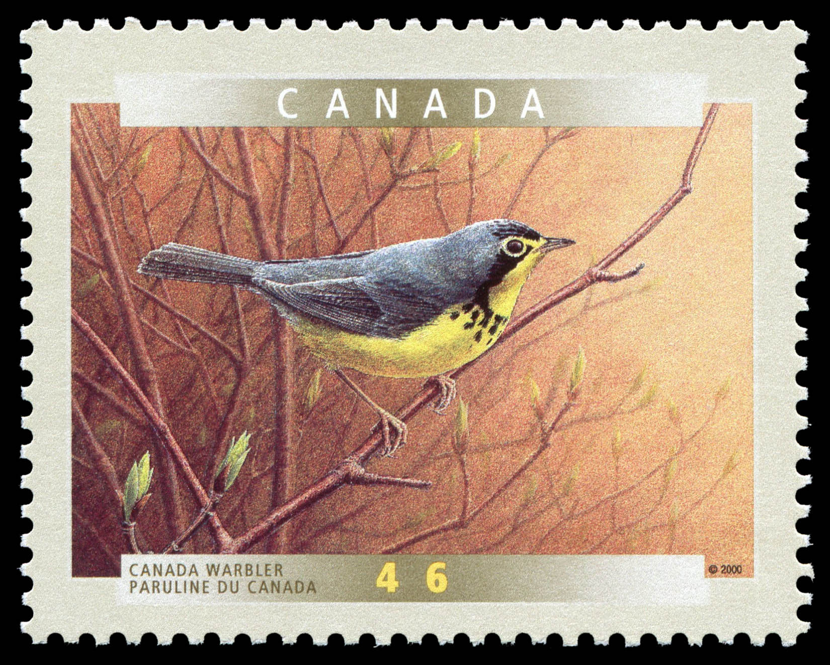 Canada Warbler Canada Postage Stamp | Birds of Canada