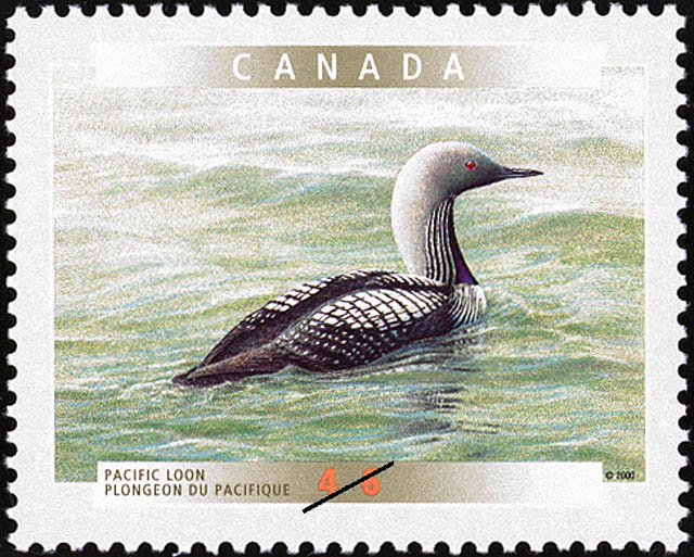 Pacific Loon Canada Postage Stamp | Birds of Canada