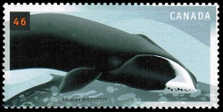 Bowhead, Balaena mysticetus Canada Postage Stamp | Whales