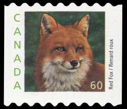 Red Fox Canada Postage Stamp | Canadian Animals