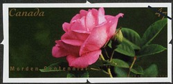 Morden Centennial Canada Postage Stamp | Roses