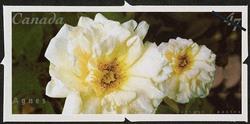 Agnes Canada Postage Stamp   Roses