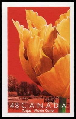 Monte Carlo Canada Postage Stamp | Tulips