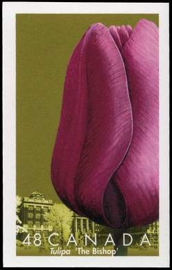 The Bishop Canada Postage Stamp | Tulips