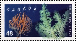 Primnoa resedaeformis and Antipatharia Canada Postage Stamp | Corals