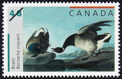 Brant Canada Postage Stamp | John James Audubon's Birds
