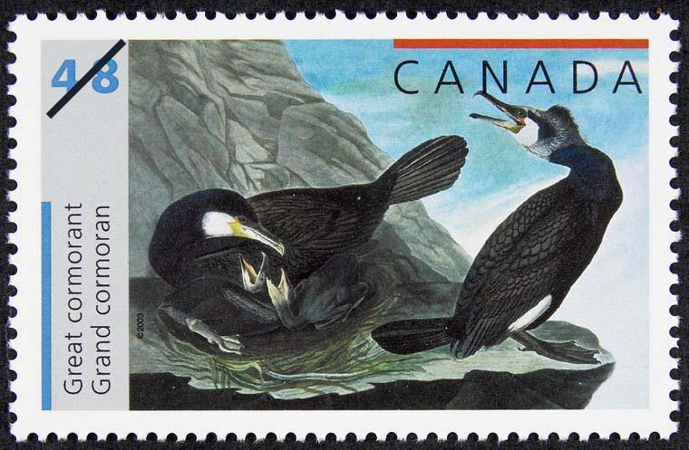 Great cormorant Canada Postage Stamp | John James Audubon's Birds