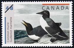 Common murre Canada Postage Stamp | John James Audubon's Birds