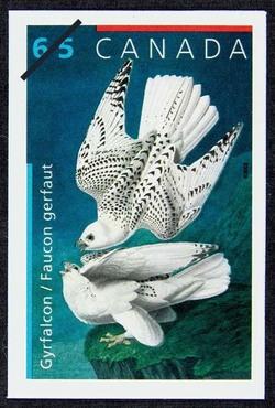 Gyrfalcon Canada Postage Stamp | John James Audubon's Birds