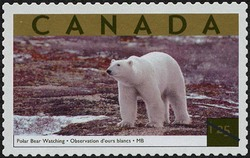 Polar Bear Watching, Manitoba Canada Postage Stamp | Tourist Attractions