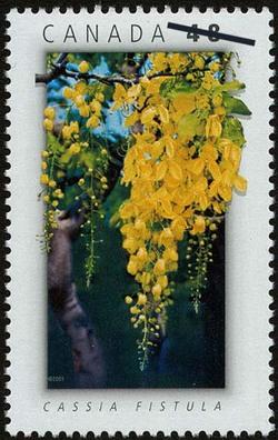 Cassia fistula Canada Postage Stamp | National Emblems