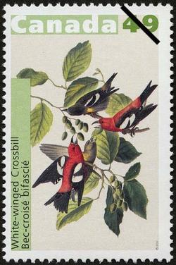 White-winged Crossbill Canada Postage Stamp | John James Audubon's Birds