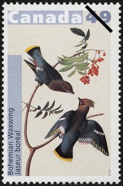 Bohemian Waxwing Canada Postage Stamp | John James Audubon's Birds