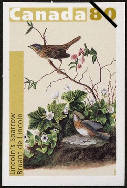 Lincoln's Sparrow Canada Postage Stamp | John James Audubon's Birds