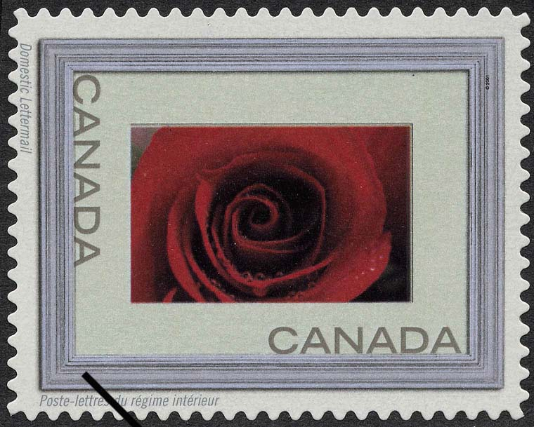 Red Rose - Silver Frame Canada Postage Stamp | Write Me ... Ring Me