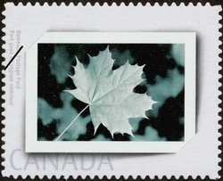 Album Canada Postage Stamp | Picture postage