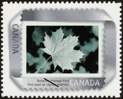 Silver Canada Postage Stamp | Picture postage