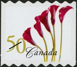 Red Calla Lily Canada Postage Stamp | Flowers