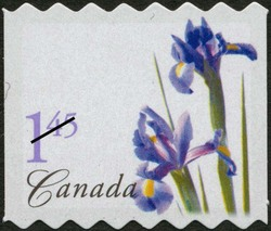 Purple Dutch Iris Canada Postage Stamp | Flowers