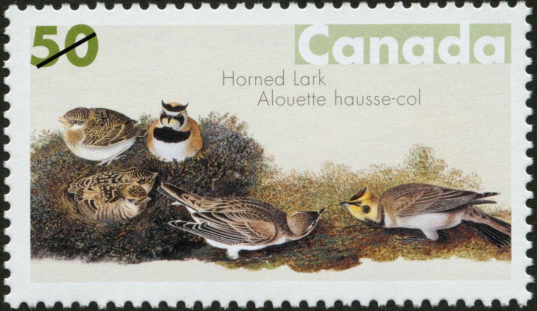 Horned Lark Canada Postage Stamp | John James Audubon's Birds
