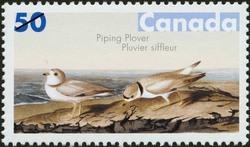 Piping Plover Canada Postage Stamp | John James Audubon's Birds