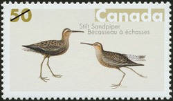 Stilt Sandpiper Canada Postage Stamp | John James Audubon's Birds