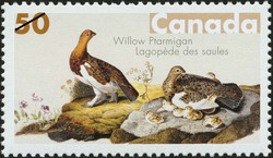 Willow Ptarmigan Canada Postage Stamp | John James Audubon's Birds