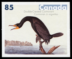 Double-Crested Cormorant Canada Postage Stamp | John James Audubon's Birds