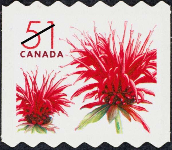 Red bergamot blossom - Monarda didyma Canada Postage Stamp | Flowers