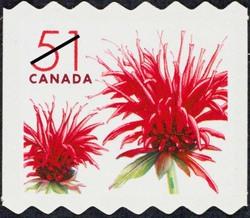 Red bergamot blossom - Monarda didyma  Postage Stamp