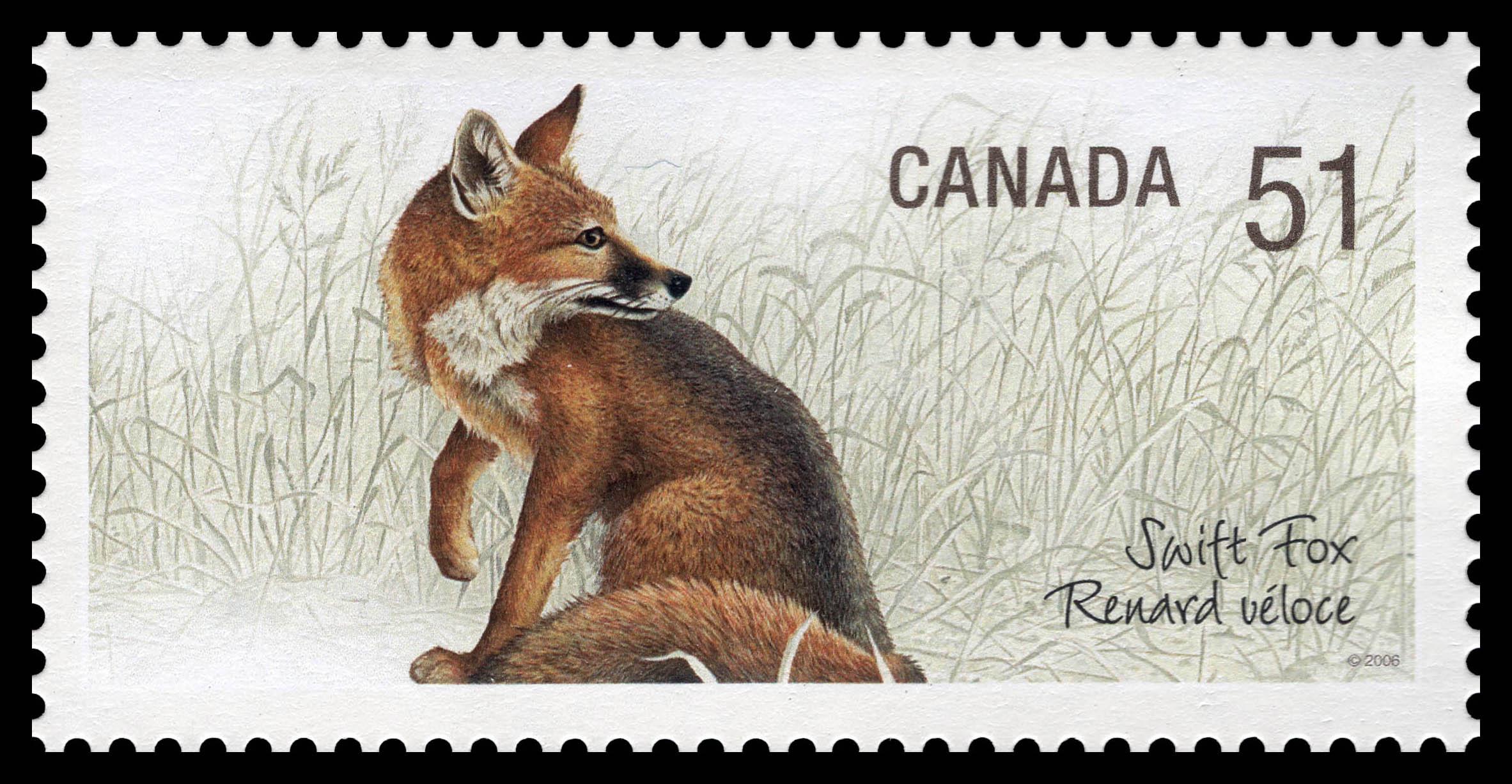 Swift fox Canada Postage Stamp