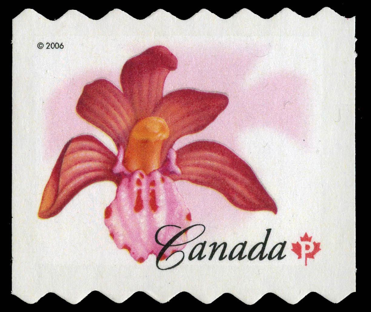 Spotted coralroot Canada Postage Stamp | Flowers