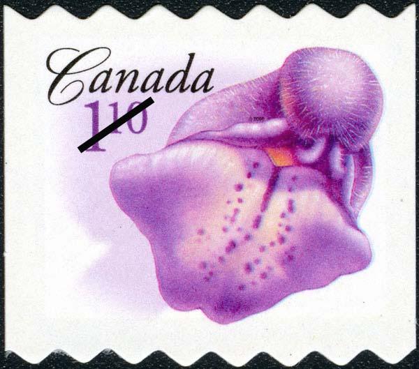 Marsh skullcap Canada Postage Stamp | Flowers