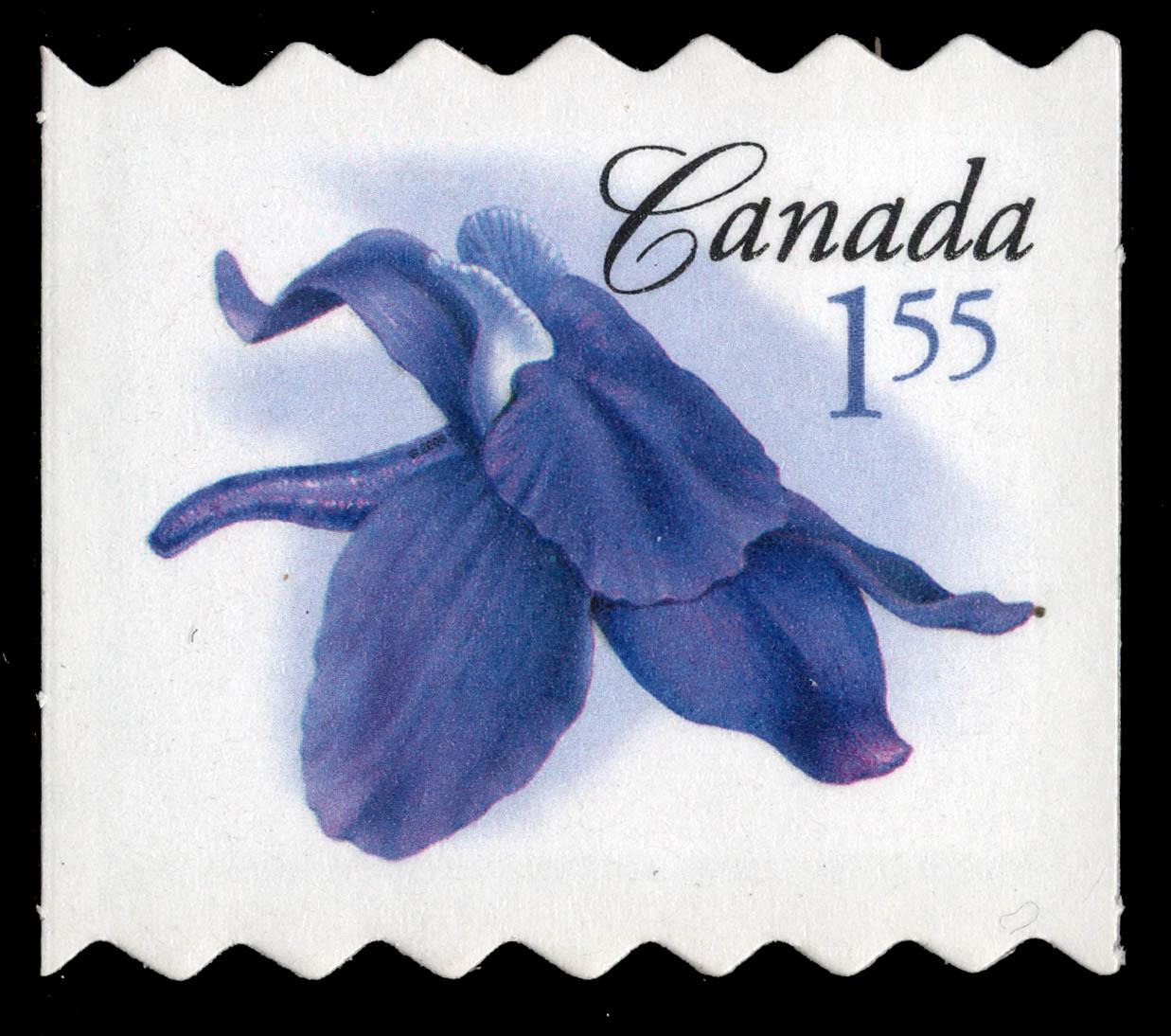 Little larkspur Canada Postage Stamp | Flowers