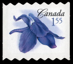 Little larkspur Canada Postage Stamp | Flowers