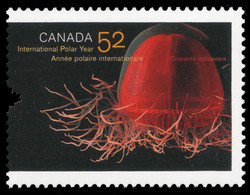 Crossota norvegica Canada Postage Stamp | International Polar Year, 2007-2008