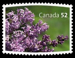 Isabella, Syringa x prestoniae Canada Postage Stamp | Lilacs