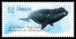 North Atlantic Right Whale Canada Postage Stamp | Endangered Species
