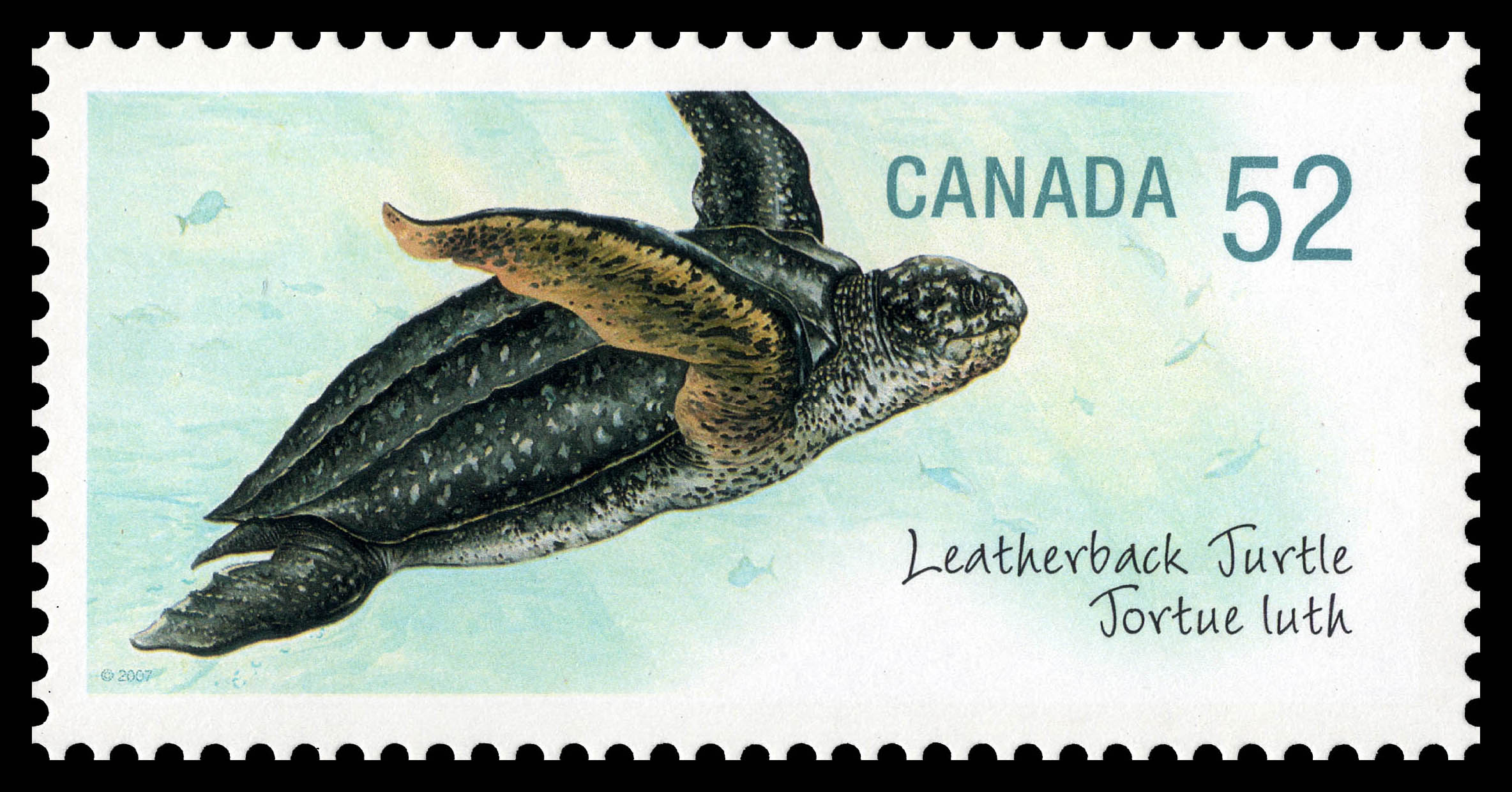 Leatherneck Turtle Canada Postage Stamp