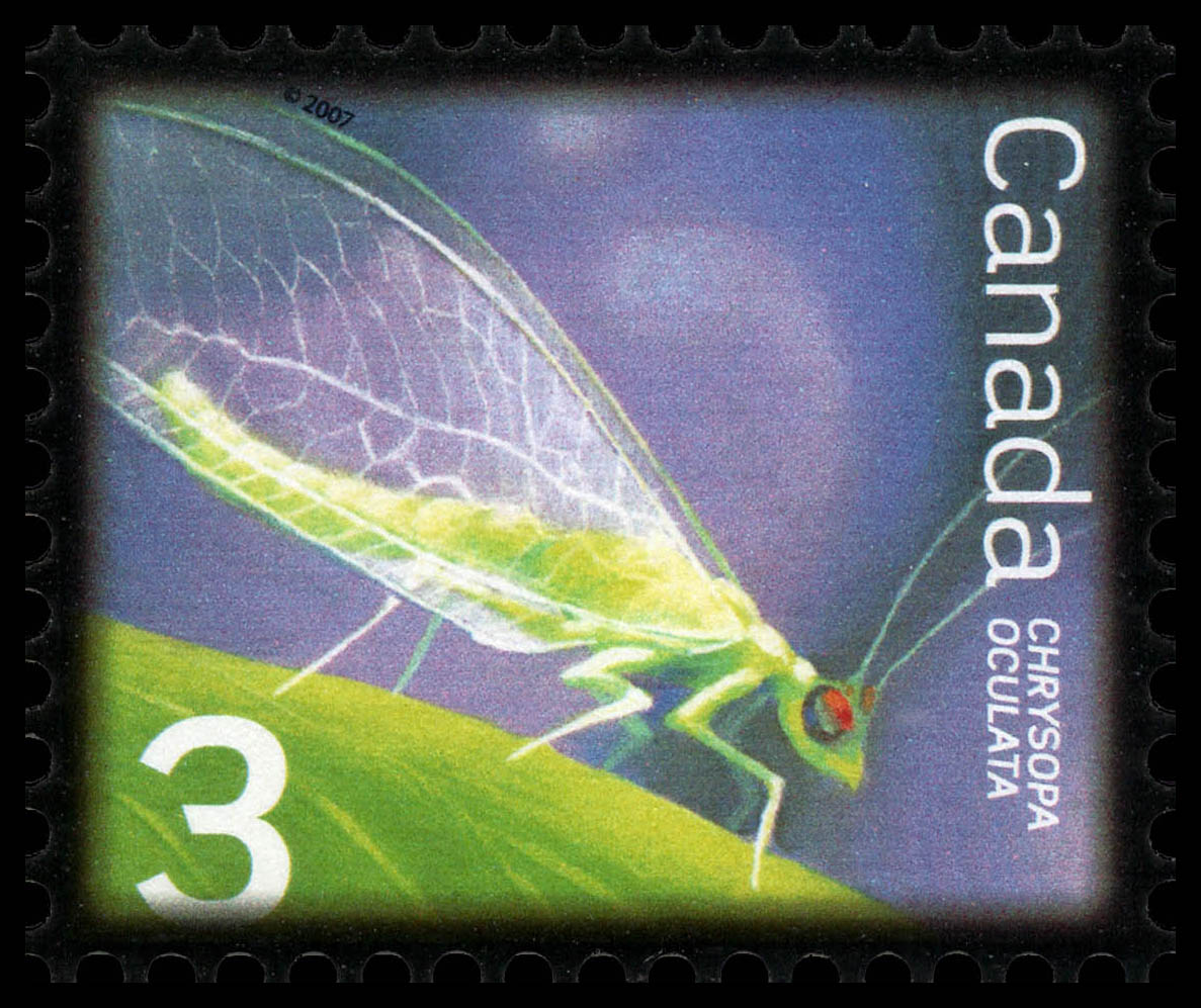 Golden-eyed Lacewing Canada Postage Stamp   Beneficial Insects