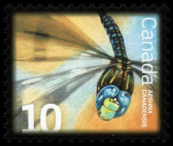 Canada Darner Canada Postage Stamp | Beneficial Insects