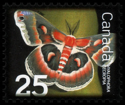 Cecropia Moth Canada Postage Stamp | Beneficial Insects