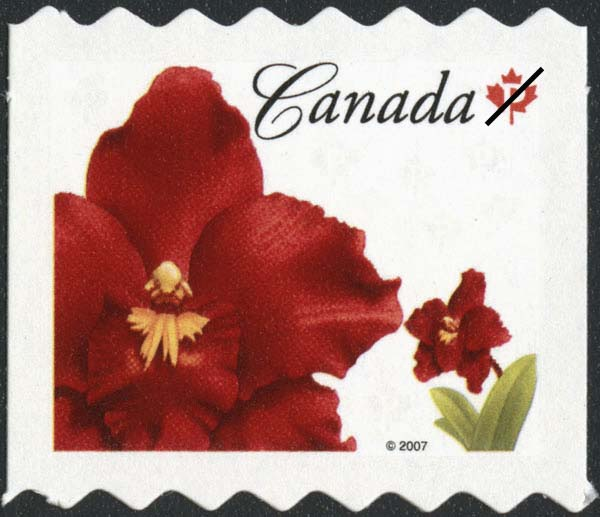 Odontioda Island Red Canada Postage Stamp | Flowers