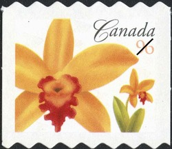 Potinara Janet Elizabeth Fire Dancer Canada Postage Stamp | Flowers