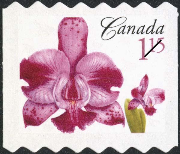 Laeliocattleya Memoria Evelyn Light Canada Postage Stamp | Flowers